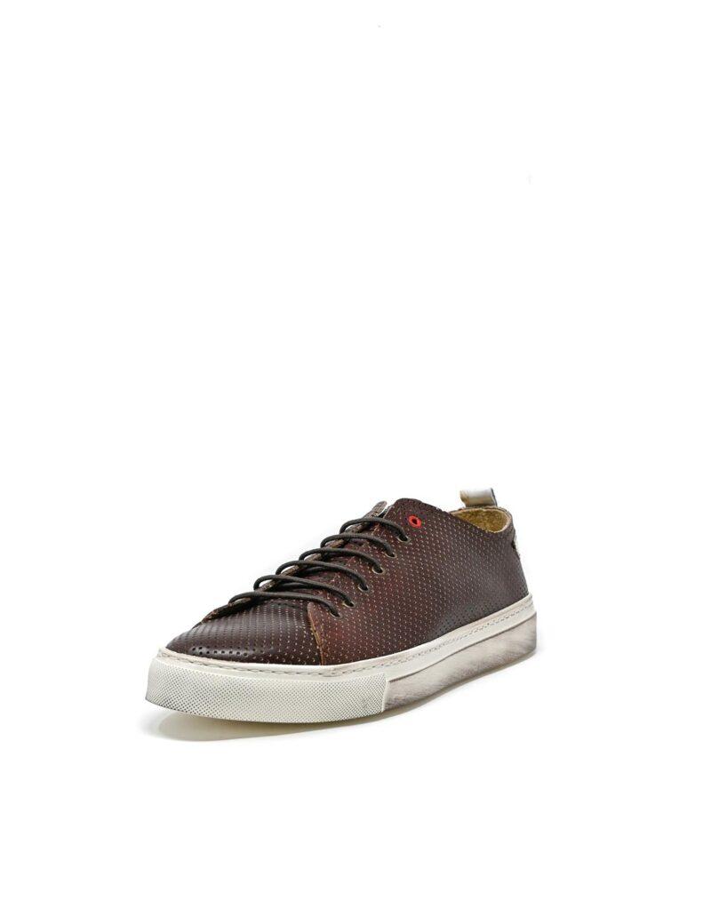 sneaker Prima in pelle traforata america-5516
